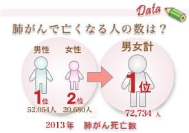 hai_data02